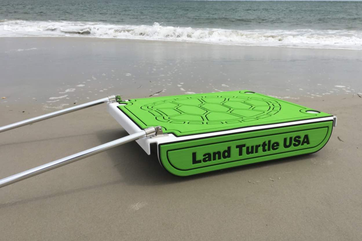Land Turtle On The Beach