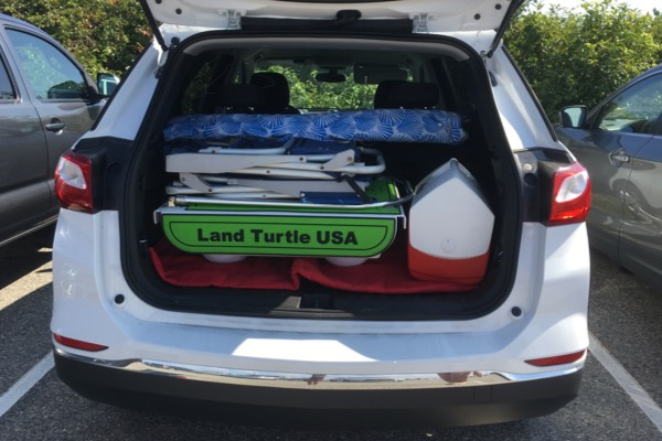 Land Turtle Stores easily